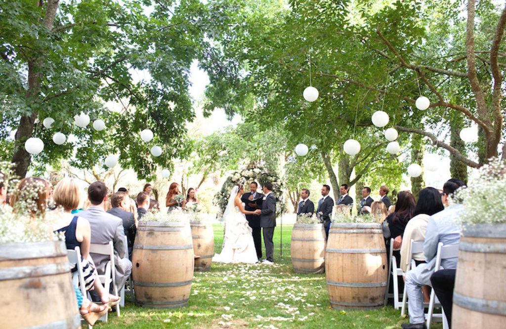 wedding in a vineyard with wine barrels
