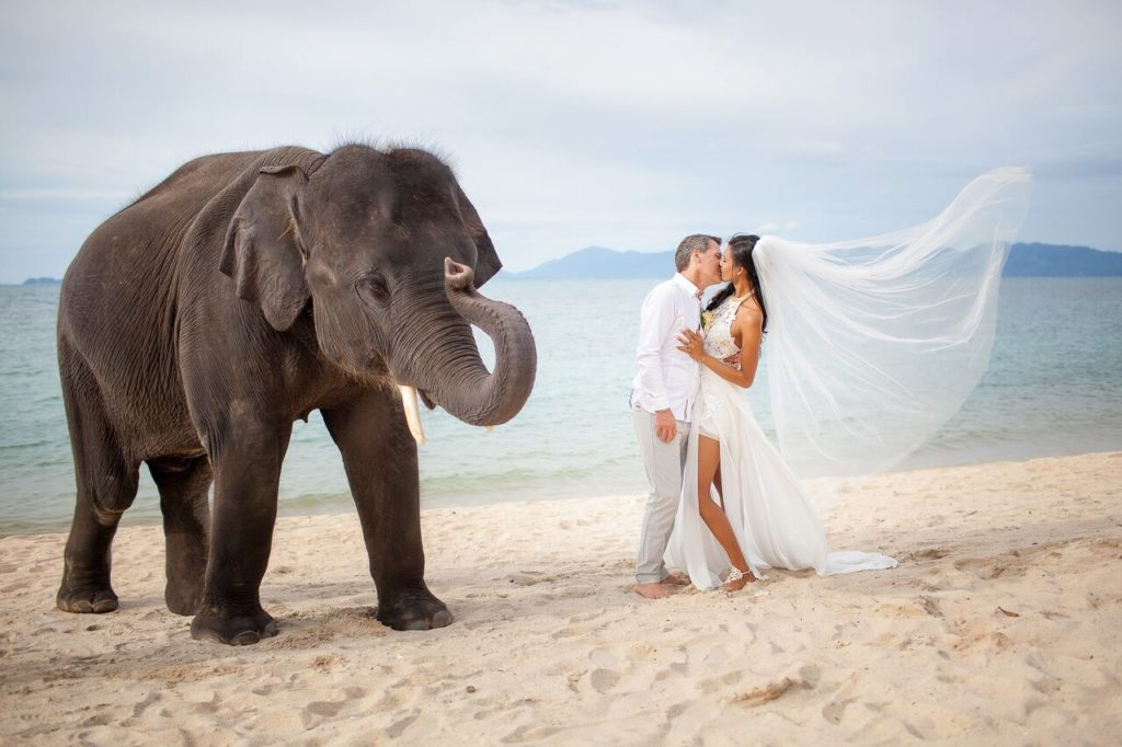 couple getting married at the beach