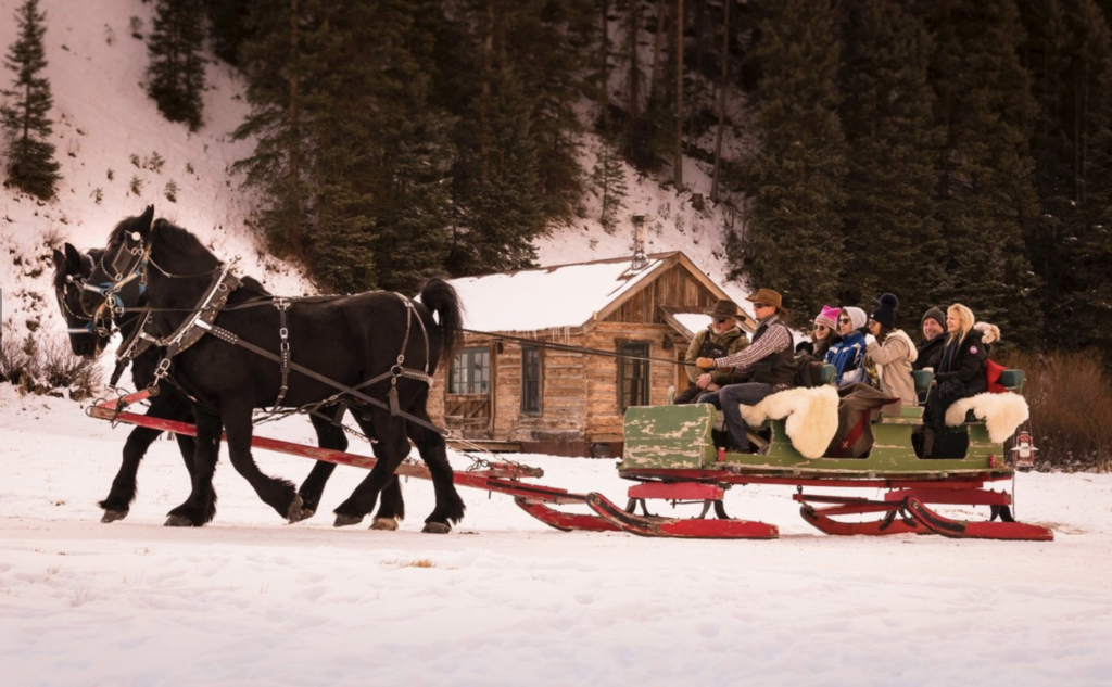 Clydesdale horses pulling sleigh full of people in the snow