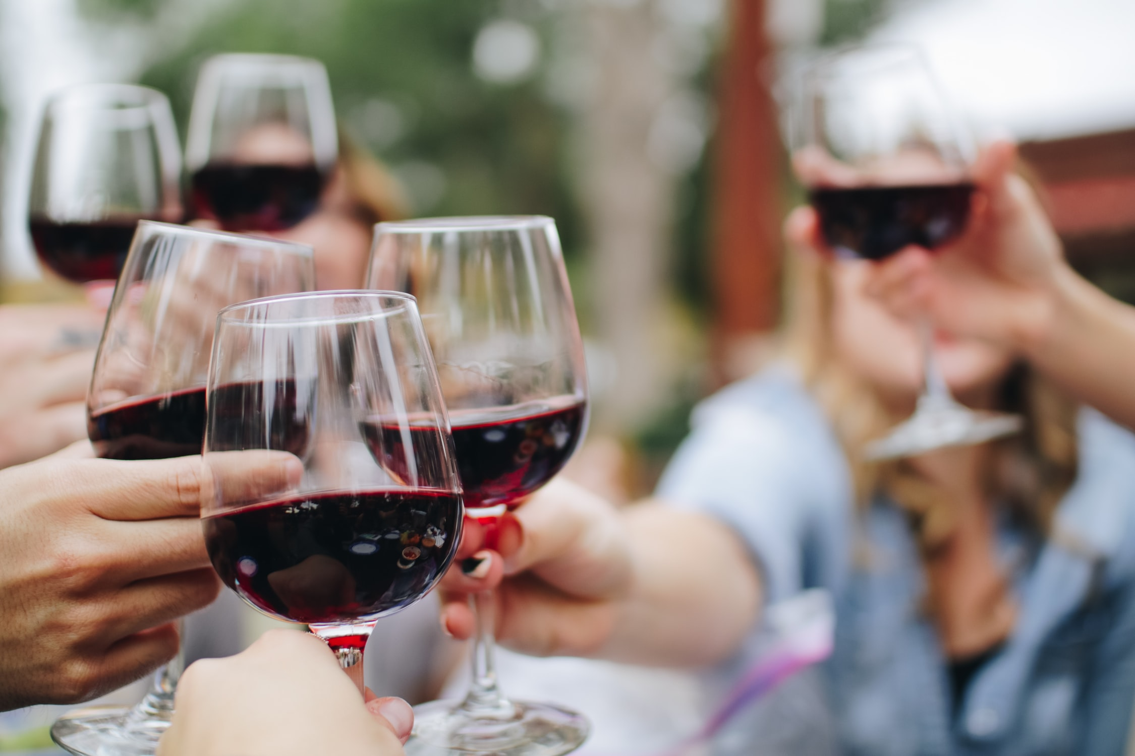 South America Wine Tasting